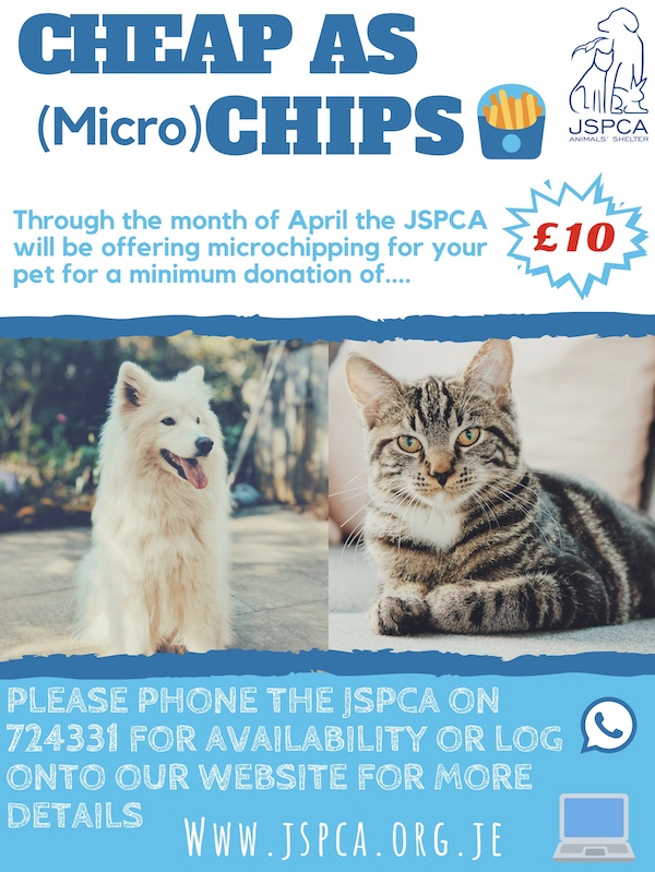 Microchipping_Month_Poster.jpg
