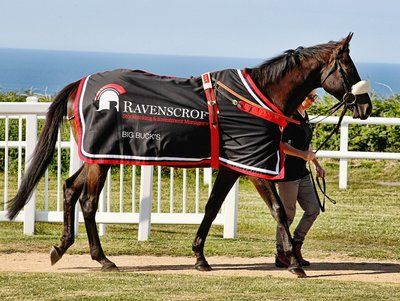 Ravenscroft brings horse racing personalities to Race Club