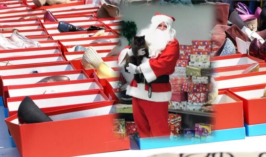 Want to help Santa Paws…?