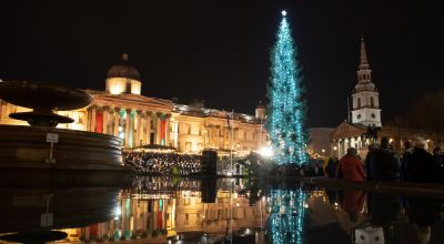 Trafalgar Square Christmas tree lit after 'sparse' spruce jibes