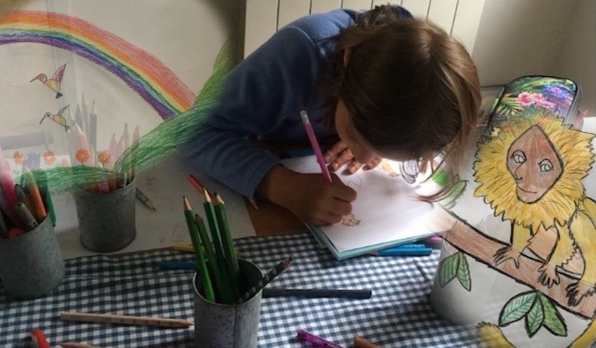 IN PICTURES: Eight-year-old creates 'incredible' drawings for Jersey Zoo