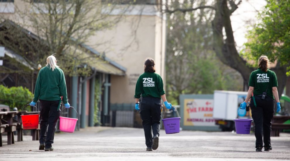 Images of London Zoo under lockdown released as charity calls for public support