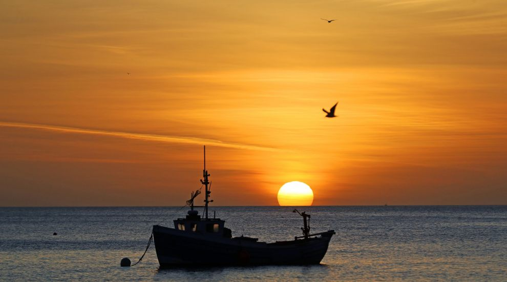 Thousands of fishermen fear criminal records due to 'burdensome' landing app