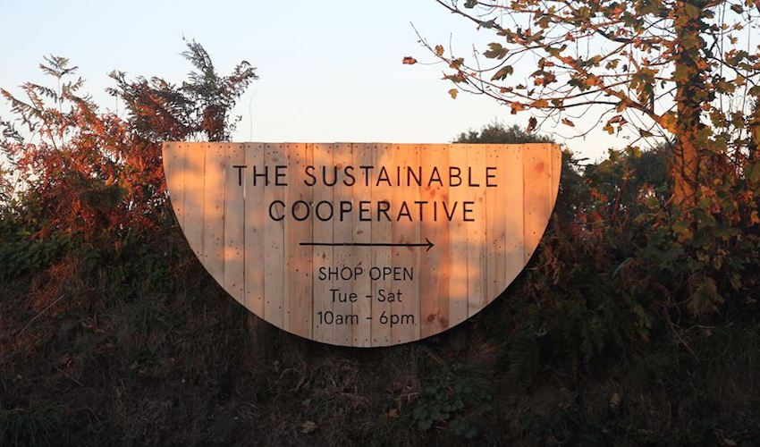 Sustainable supermarket hunts for new home