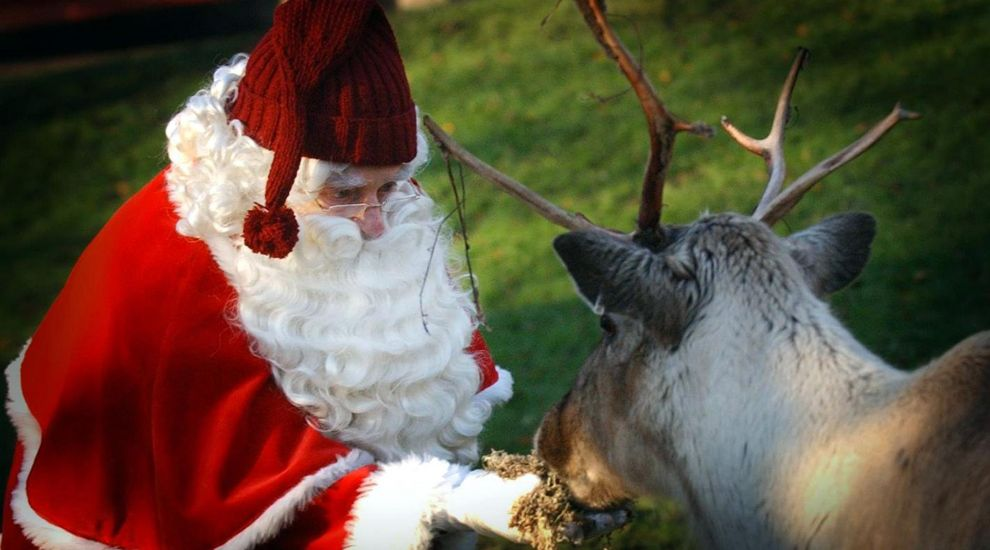 Why the other reindeer probably weren't laughing at Rudolph's red nose